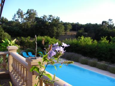 Each One Benefits From A Small Lounge Area And A Private Terrace. In  Summer, You Can Take Advantage Of The Swimming Pool. Tea/coffee Making  Facilities In ...