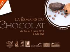 picture of Atelier de découverte du chocolat (adultes)